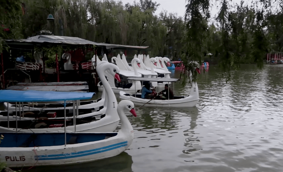 Many boats in from of swans available for you to ride over burnham lagoon in burnham park baguio city philippines