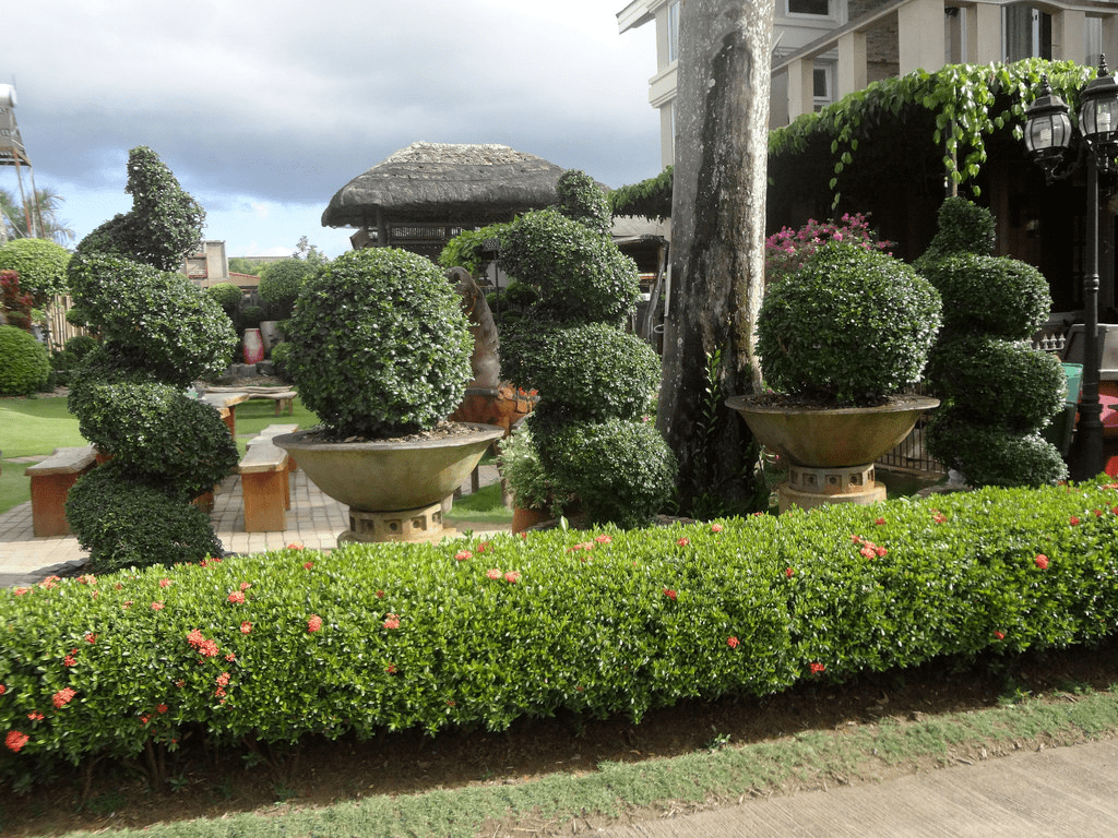 well manicured garden in baker's hill puerto princesa palawan philippines