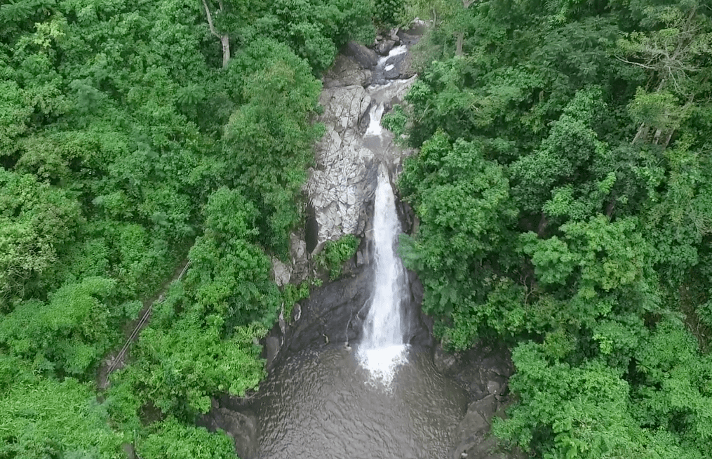 the maribina falls waterfall in catanduanes philippines as een from the sky shot by drone aerial view