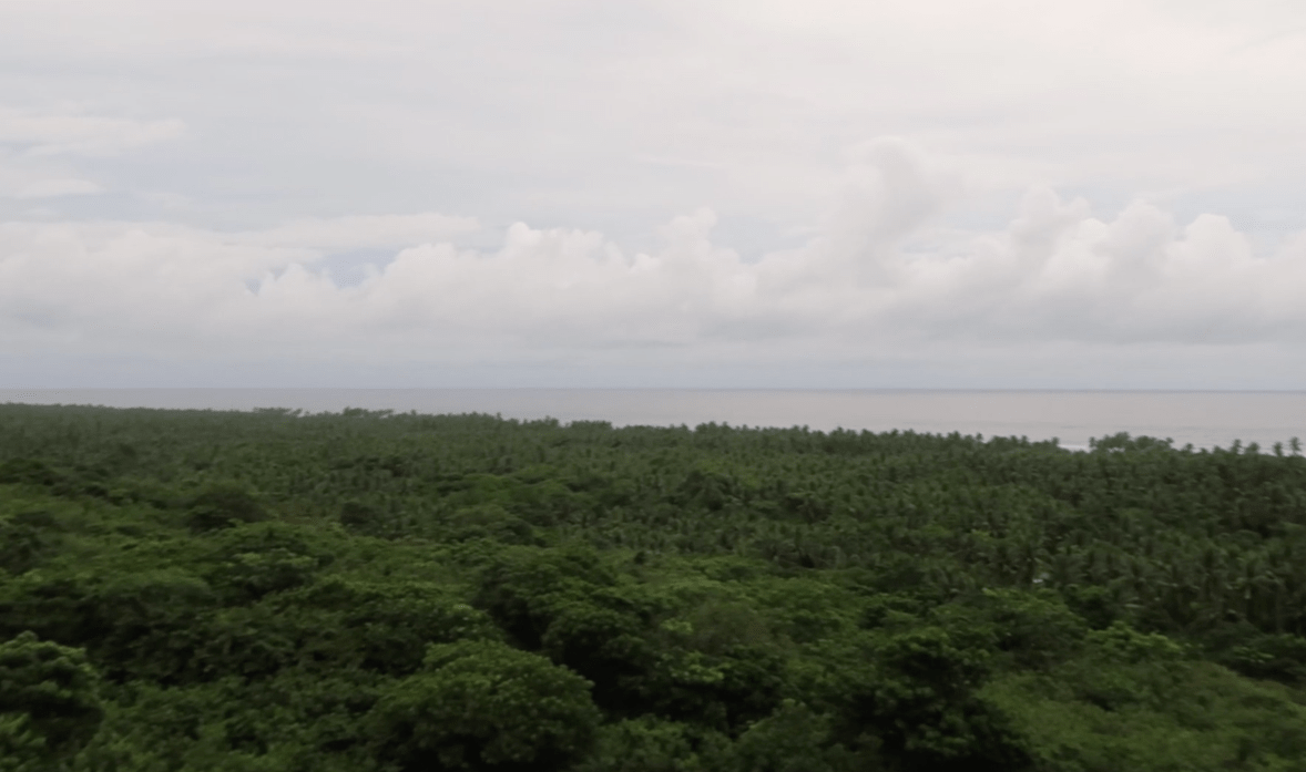 a view over the south china sea in pangasinan philippines with lush green trees