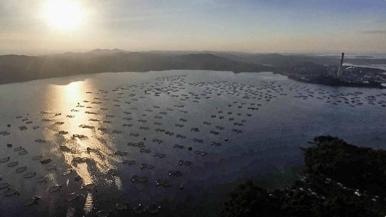 drone photo aerial photography of sunset in pangasinan philippines with fish farms and electrical power plant