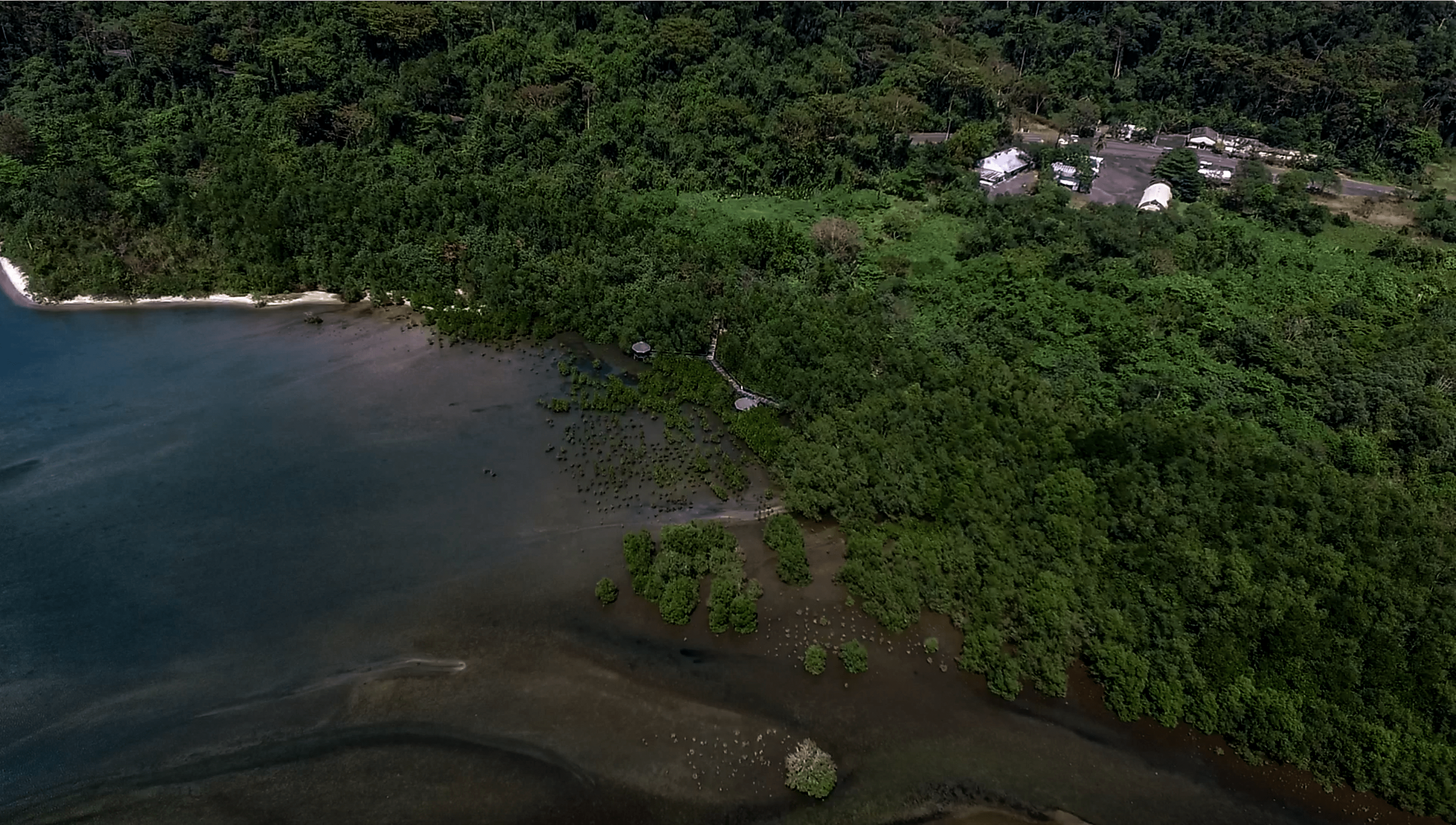 drone shot of triboa bay mangrove park in subic zambales philippines
