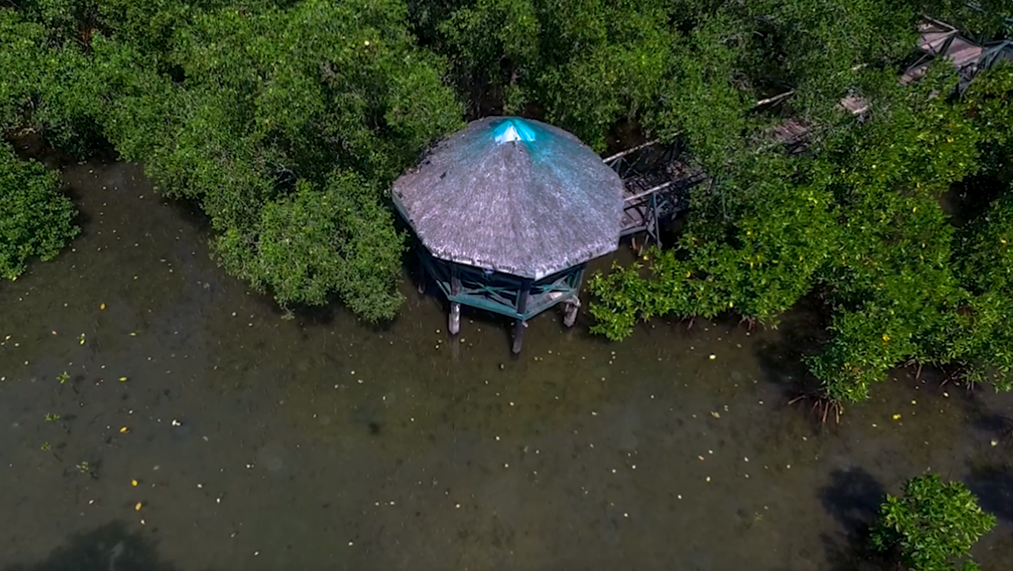 low drone shot of little hut in triboa bay mangrove park in subic zambales