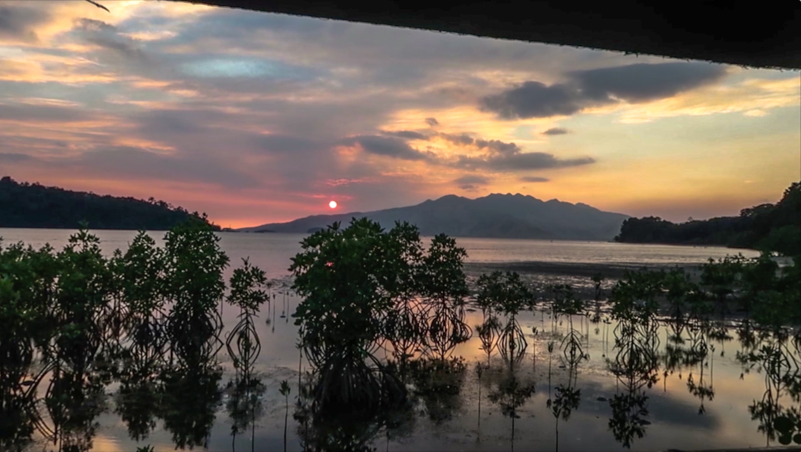 sunset at subic bay in triboa bay mangrove park zambales