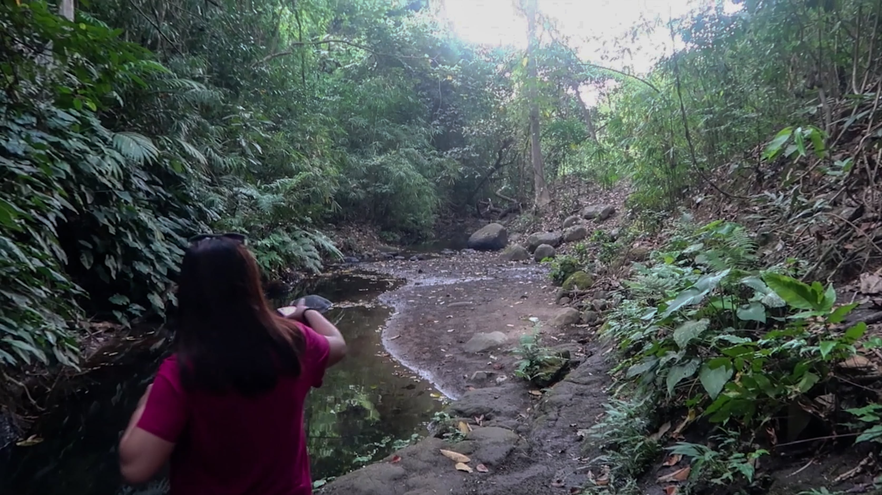melody somido pointing in direction at picturesque forest in subic zambales philippines